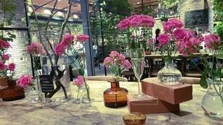 癒しのカフェの写真・画像素材[4916168]