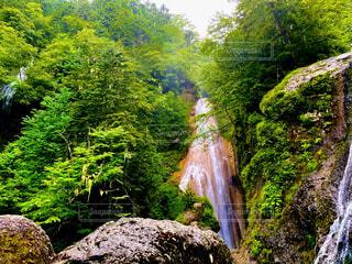 自然,風景,森林,屋外,水面,滝,樹木,岩,草木