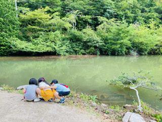 自然,風景,屋外,湖,緑,散歩,川,水面,樹木,キャンプ,キャンプ場,グリーン,早朝,子供たち,草木
