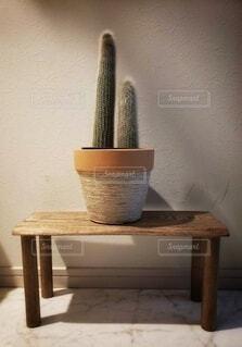 屋内,花瓶,テーブル,床,植木鉢,家具,観葉植物