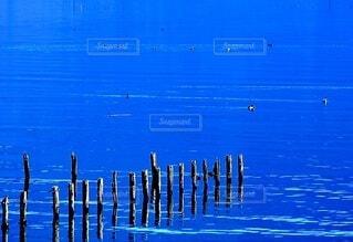 湖畔の琵琶湖北部にての写真・画像素材[4923931]