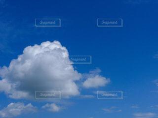 自然,屋外,雲,青空,夏空