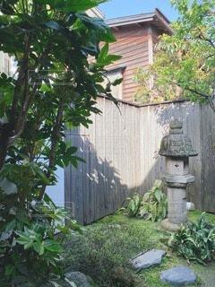 庭の写真・画像素材[4894475]