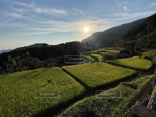自然,風景,空,秋,屋外,緑,草原,雲,棚田,田舎,山,景色,草,丘,旅行,トラック,田んぼ,鹿児島,草木,八重の棚田
