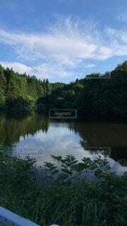 自然,風景,空,湖,水面,池,山,草木