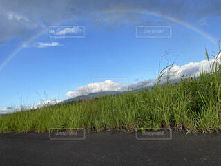 風景,空,屋外,雲,虹,山,河川敷,草木