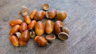 自然,アウトドア,秋,屋外,果物,どんぐり,野外,ドングリ,ナット