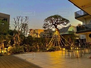 空,夜,屋外,樹木,明るい,遊び場