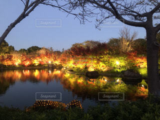 秋の準備の写真・画像素材[4903110]
