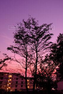 空の写真・画像素材[238200]
