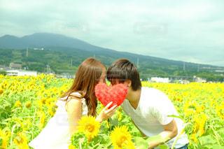 LOVE - No.381528