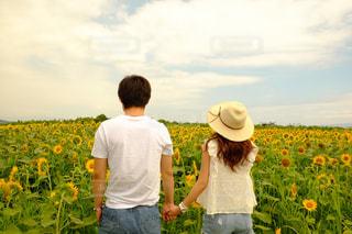 LOVE - No.381529