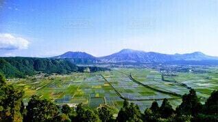 自然,風景,空,屋外,山,樹木,田園,阿蘇,高原