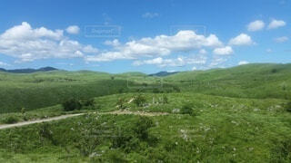 自然,風景,空,屋外,緑,草原,雲,山,景色,草,丘,樹木,新緑,高原,草木,眺め,日中,山腹