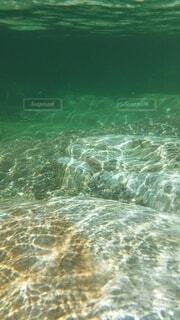 屋外,川,泳ぐ,水中