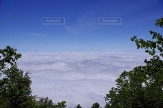 空,屋外,白,雲,霧,山,樹木,雲海