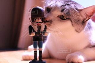 猫,屋内,かわいい,ねこ,おもちゃ,雑貨,ほんわか,グッズ,ネコ