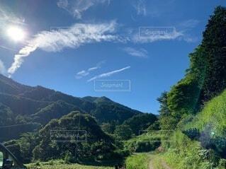 自然,風景,空,屋外,緑,雲,青,田舎,山,樹木,山登り,草木