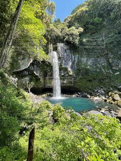 自然,森林,屋外,太陽,水面,葉,景色,滝,光,樹木,たき,草木,眺め