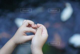 子ども,湖,手,指,人物,人,爪
