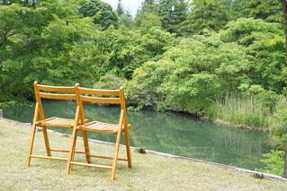 屋外,湖,水面,草,椅子,樹木,家具,木目,草木,座席