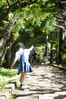 子ども,動物,鳥,屋外,後ろ姿,歩く,樹木