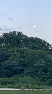 自然,風景,空,屋外,山,樹木,月