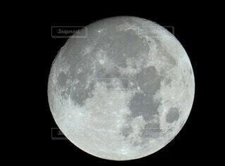 満月の特写の写真・画像素材[4912535]