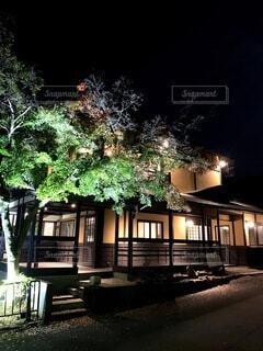 自然,空,建物,秋,夜,京都,散歩,洋館,樹木,和風,明るい,歴史,建築,日本文化