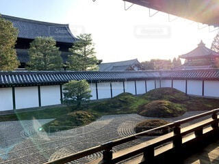 空,建物,秋,屋外,京都,散歩,観光,家,樹木,旅行,寺院,寺,歴史,建築,草木,観光名所,日本文化