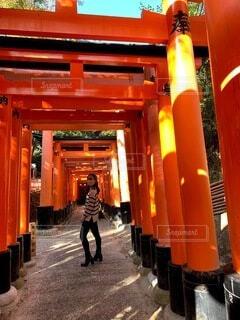 風景,屋外,京都,神社,散歩,鳥居,オレンジ,観光,人物,人,旅行,門,伏見稲荷大社,伏見稲荷,歴史,建築,観光名所,日本文化