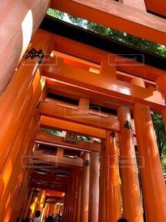 建物,京都,神社,赤,散歩,鳥居,オレンジ,観光,旅行,門,伏見稲荷大社,伏見稲荷,歴史,建築,観光名所,日本文化