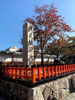 空,秋,紅葉,屋外,京都,神社,赤,晴れ,晴天,オレンジ,観光,樹木,旅行,伏見稲荷大社,伏見稲荷,歴史,観光名所,日本文化,お天気