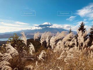 富士山の写真・画像素材[4925250]