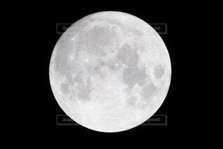 満月に近い月の写真・画像素材[4916075]