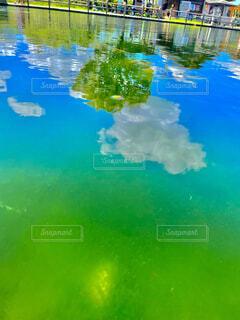 木,雲,水面,池,ドライブ