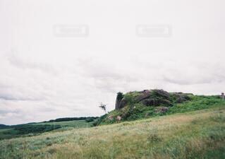 自然,風景,空,公園,秋,屋外,草原,雲,霧,山,景色,草,丘,樹木,地面,高原,フィルムカメラ,草木