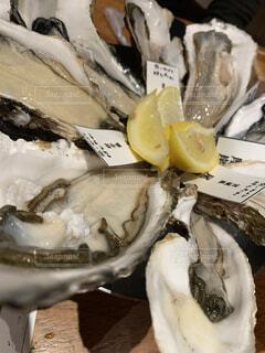 食べ物,動物,牡蠣,貝,飲み会,カキ,魚介類,オイスター,岩牡蠣,田町