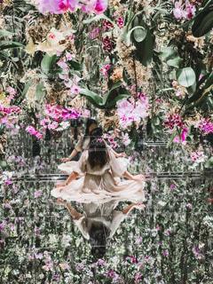 花,ピンク,緑,アート,鏡,像,明るい,色,蘭,草木