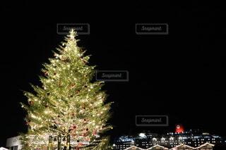 海,冬,絶景,暗い,景色,イルミネーション,キャンドル,港,クリスマス,照明,ツリー,横浜,神奈川,クリスマスマーケット,Christmas