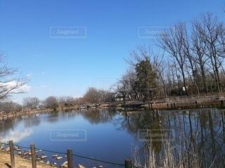 自然,風景,空,屋外,湖,雲,川,水面,池,反射,樹木