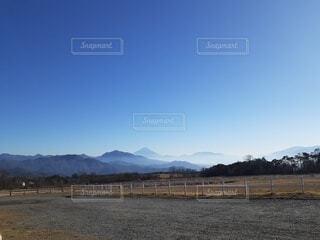 風景,空,花,富士山,屋外,雲,山,景色,草,樹木