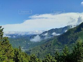 自然,風景,空,屋外,雲,霧,山,樹木,バック グラウンド