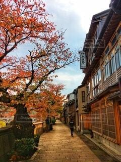 秋の金沢の写真・画像素材[4813926]