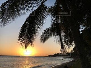 ニューカレドニア の夕日の写真・画像素材[4816153]