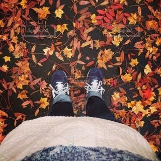 風景,秋,紅葉,靴,スニーカー,ニット,秋服