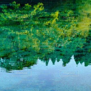 自然,風景,屋外,湖,緑,水,水面,池,反射,リフレクション