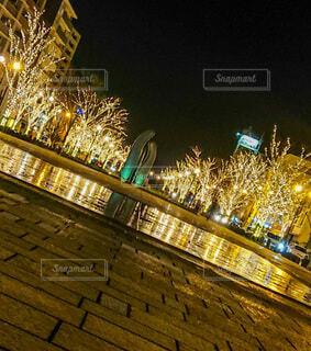 空,冬,夜,屋外,反射,イルミネーション,クリスマス,リフレクション,明るい,鹿児島市,街路灯,みなと大通り公園