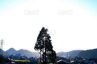 自然,風景,空,屋外,太陽,山,光,樹木