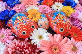 花,神社,花瓶,旅行,鯛,花手水